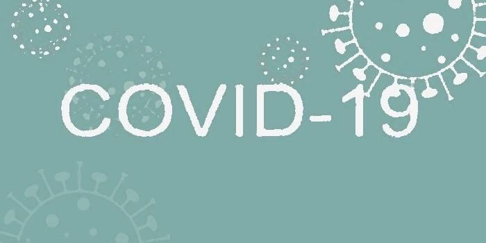У зв'язку з погіршенням ситуації щодо поширення COVID – 19 у Бориспільському районі Гірська сільська рада обмежує доступ до приміщення сільської ради