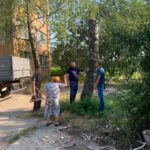 На 7 окрузі обрізали аварійні дерева