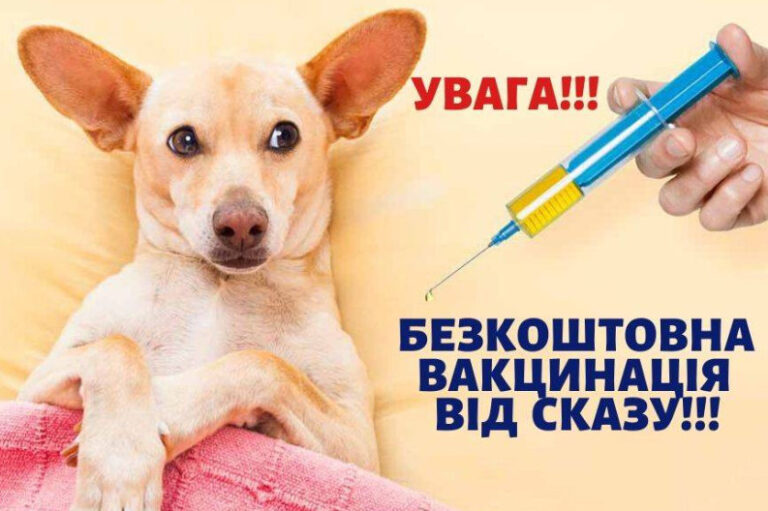19 вересня відбудеться щеплення тварин від сказу